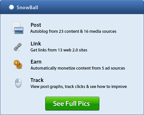 WP Snowball - Turn 1 blog post into 363